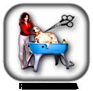 peluquería perros y gatos