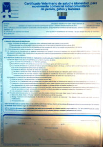 documento intracomunitario