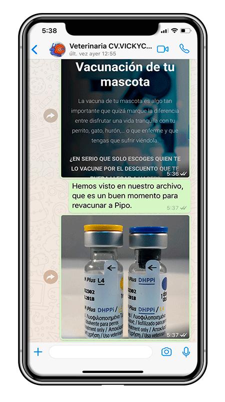 Vacuna avisos vickycan