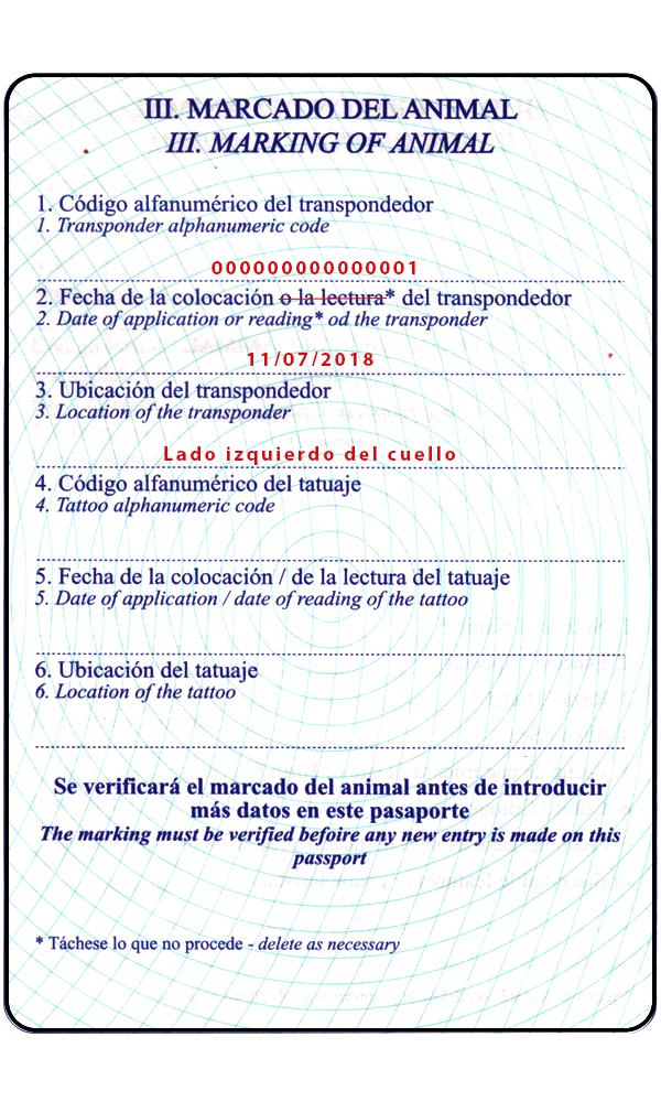 Pasaporte. Sección III