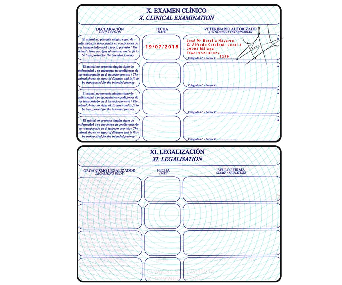 Pasaporte Sección Legalización