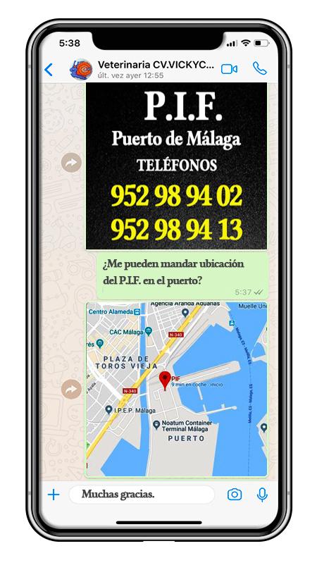 Teléfono y ubicación del PIF