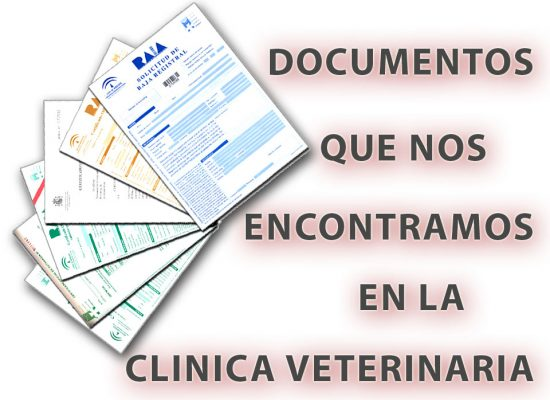 documentos en veterinaria