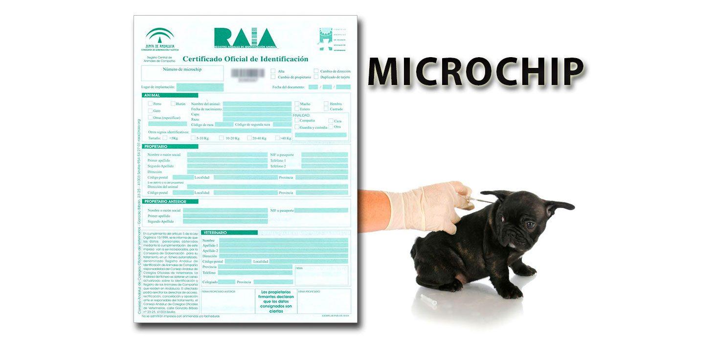 microchip_alta1